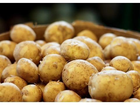 """土豆做法做法千千万,我家偏爱""""它"""",当早餐当零食,扛饿又减肥"""