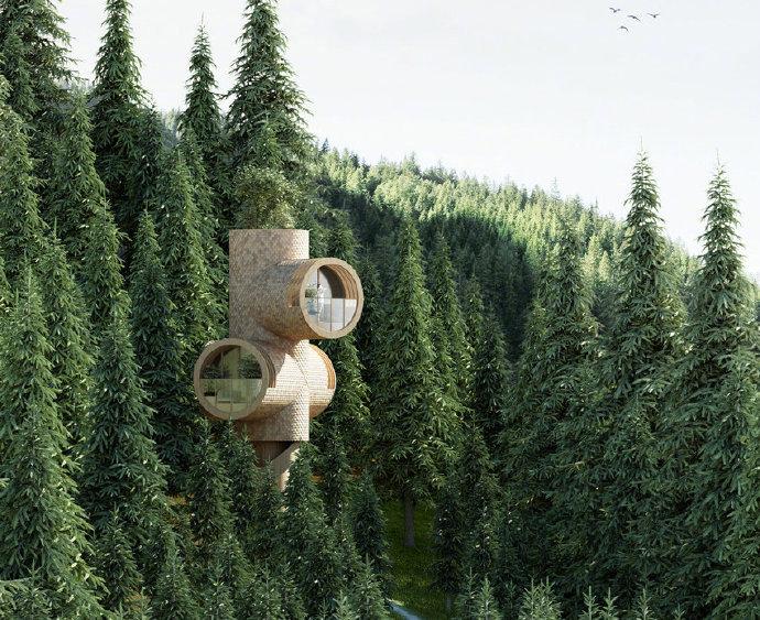 截断的木制树屋,Precht 工作室提出模块化家庭概念