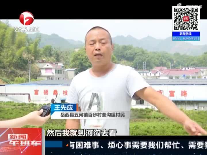 《新闻午班车》岳西:男子落入河道  退伍军人跳水营救