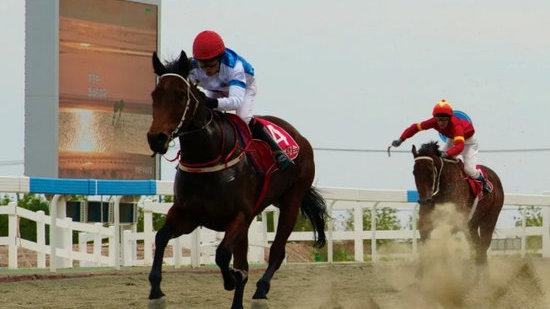 2021中华民族大赛马·新疆马会(木垒站)性能测试系列赛要开始了