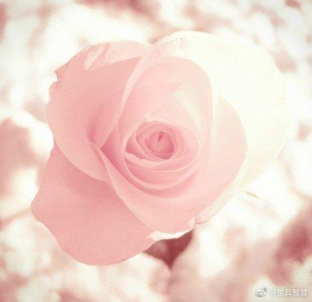 去掉我执我爱的最好办法就是发慈悲心,愚者为自己,智者为别人