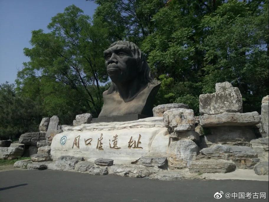 北京猿人的发现研究与失踪:随着考古学的发展