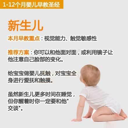 父母必读!宝宝0-12个月的早教宝典~