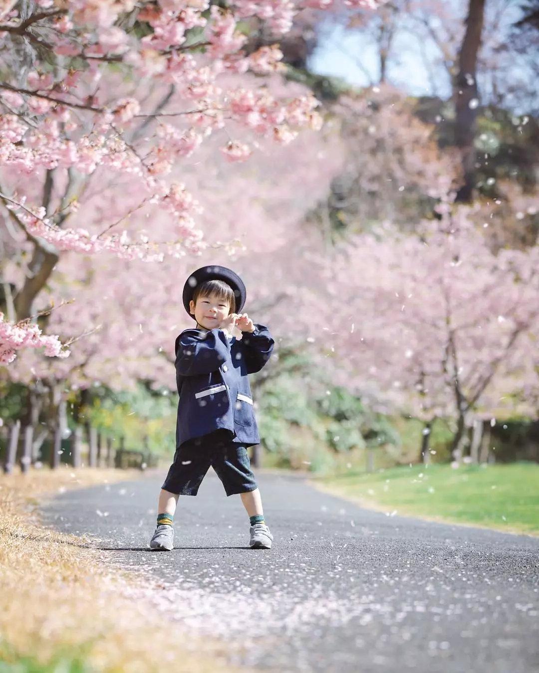 """日本妈妈""""偷拍""""樱花树下的儿子,美成宫崎骏童话,治愈无数人"""