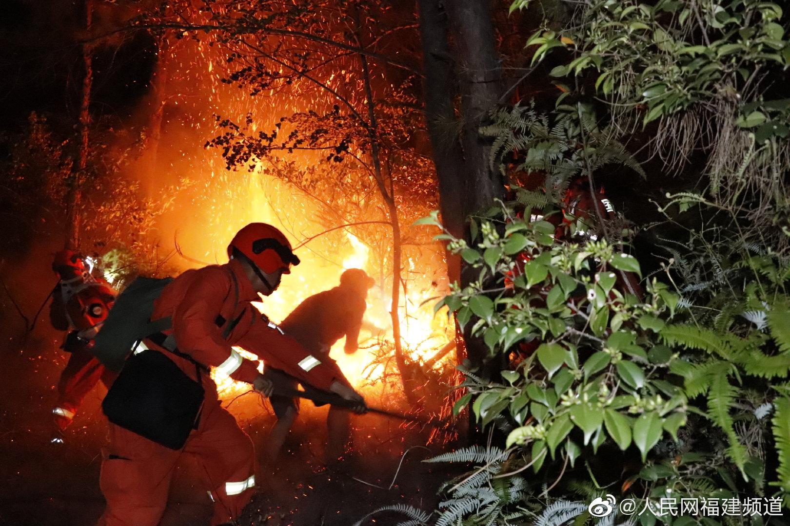福建武夷山突发火灾 森林消防和消防救援队伍协同开展救援