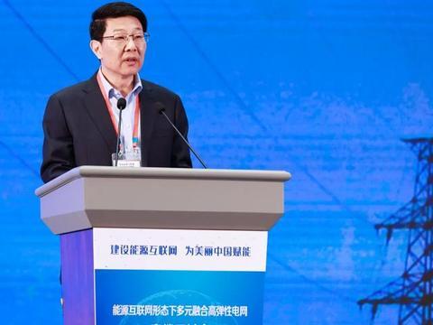 国网浙江电力董事长尹积军:建设能源互联网 为美丽中国赋能