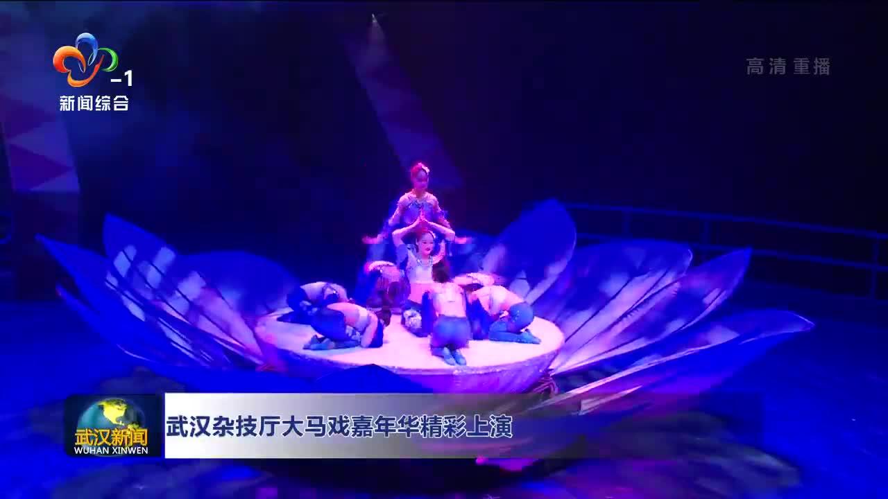 武汉杂技厅大马戏喜年华精彩上演