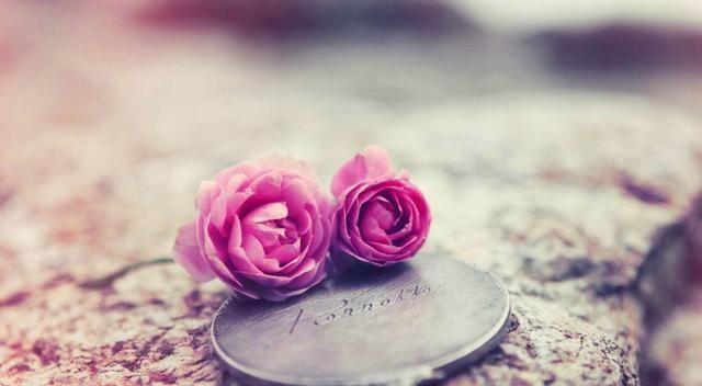 未来一个月,缘分桃花结实累累,往后余生绝不辜负爱情的3大生肖