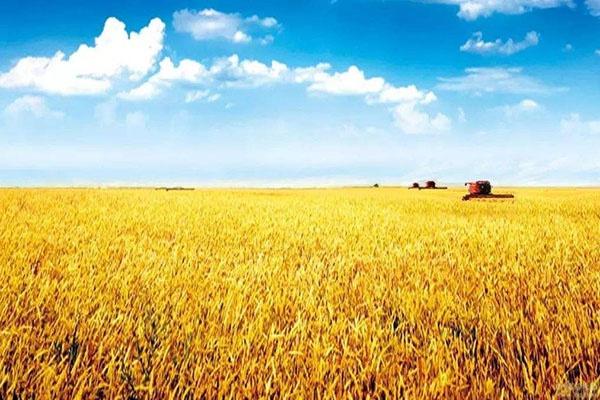 石阡县电大邀请养蜂专家为养殖户进行技术指导