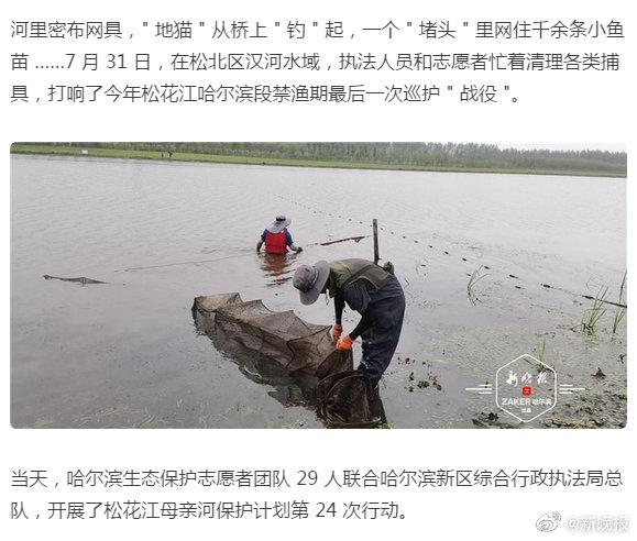 """一个""""堵头""""里千余条小鱼苗,松北汉河清理出206件捕具"""