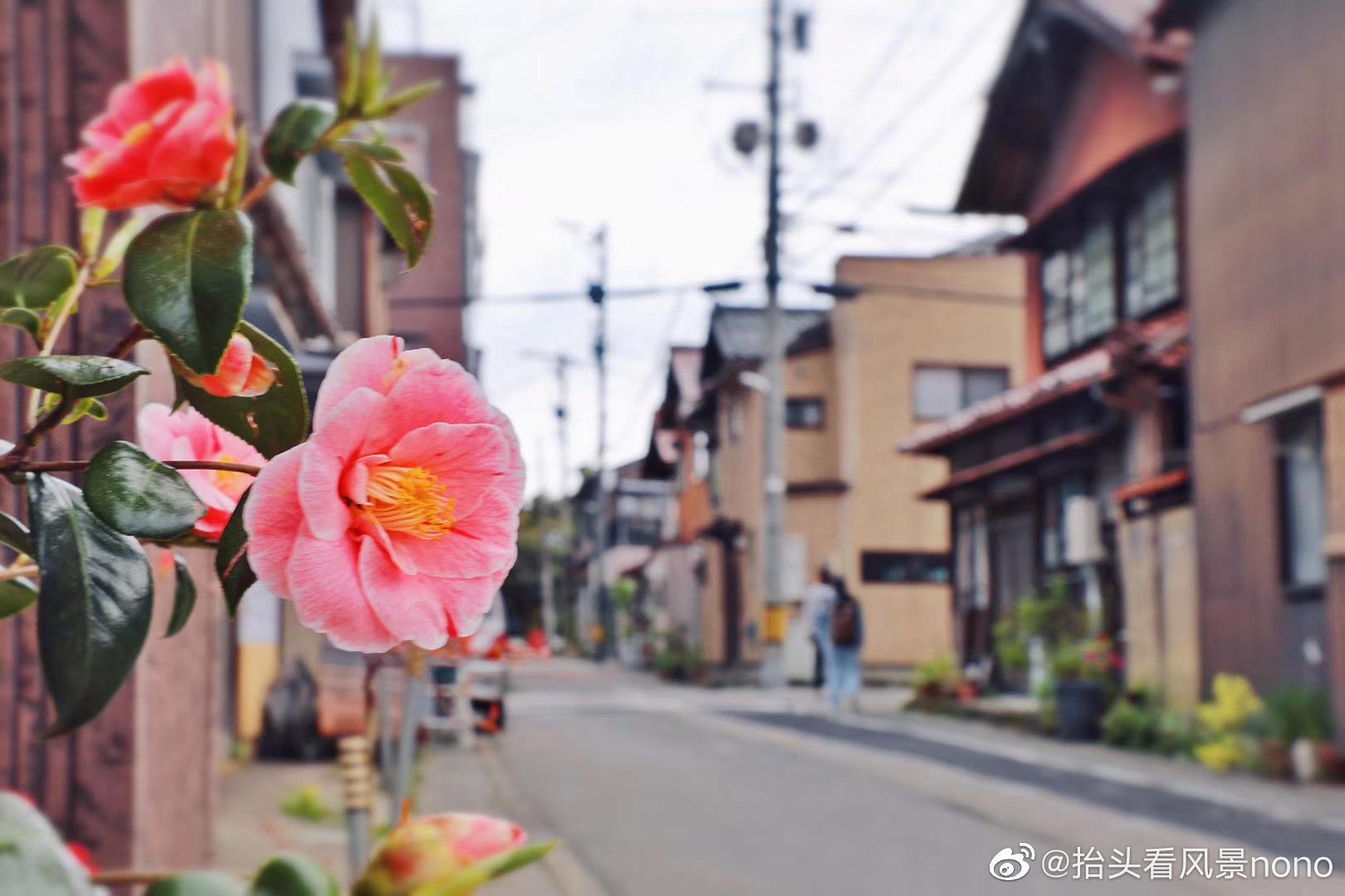 日本,石川县加贺市
