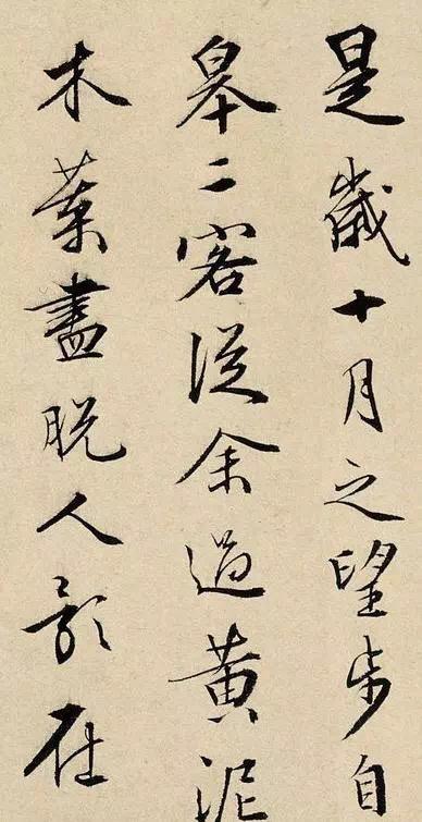 周天球行书《后赤壁赋》,得文徵明真传。周天球(1514—1595)