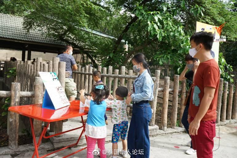 泰国清迈动物园重开 日接2000人