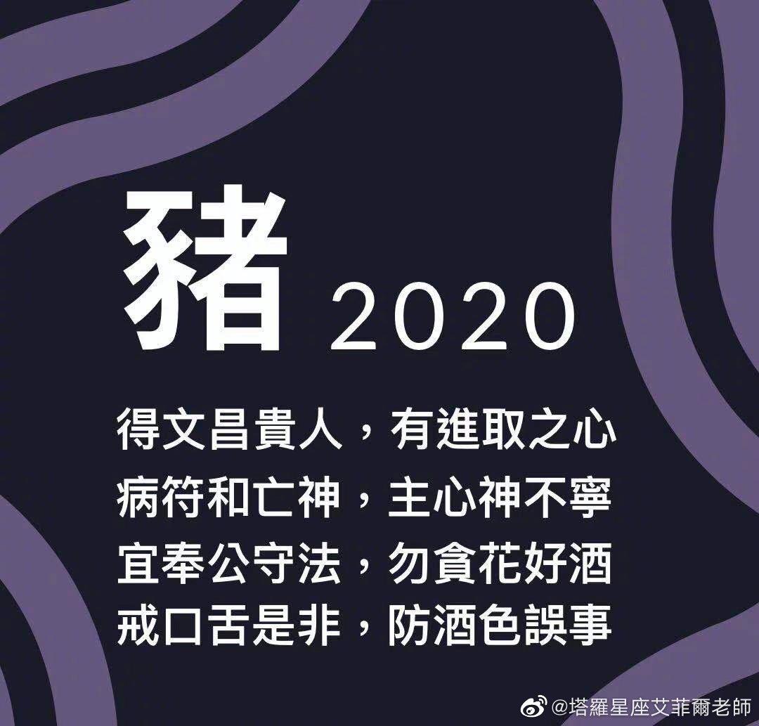 2020运势「生肖猪」机遇降临之年
