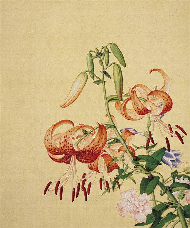 郎世宁《仙萼长春图册》,现藏于台北故宫博物院