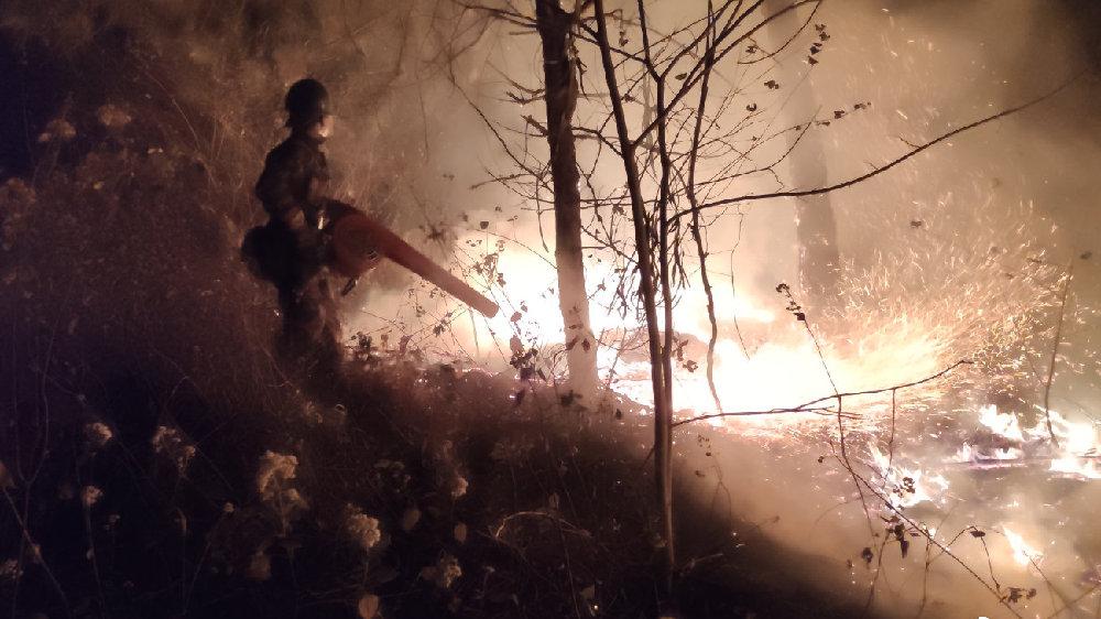 西昌火灾致19人牺牲,相似的悲剧何以发生?|新京报快评
