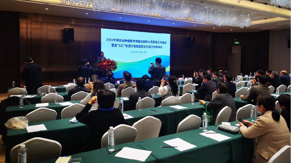 湖北省肿瘤医学质控中心举行专家组工作会议