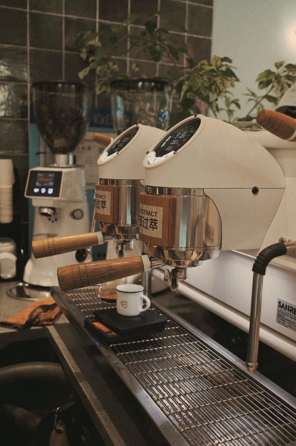 秋风微凉,一起喝杯咖啡聊聊天吧@·芒果团子·