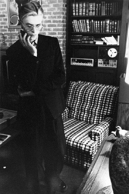 大卫鲍伊 David Bowie ,太绝了!!!