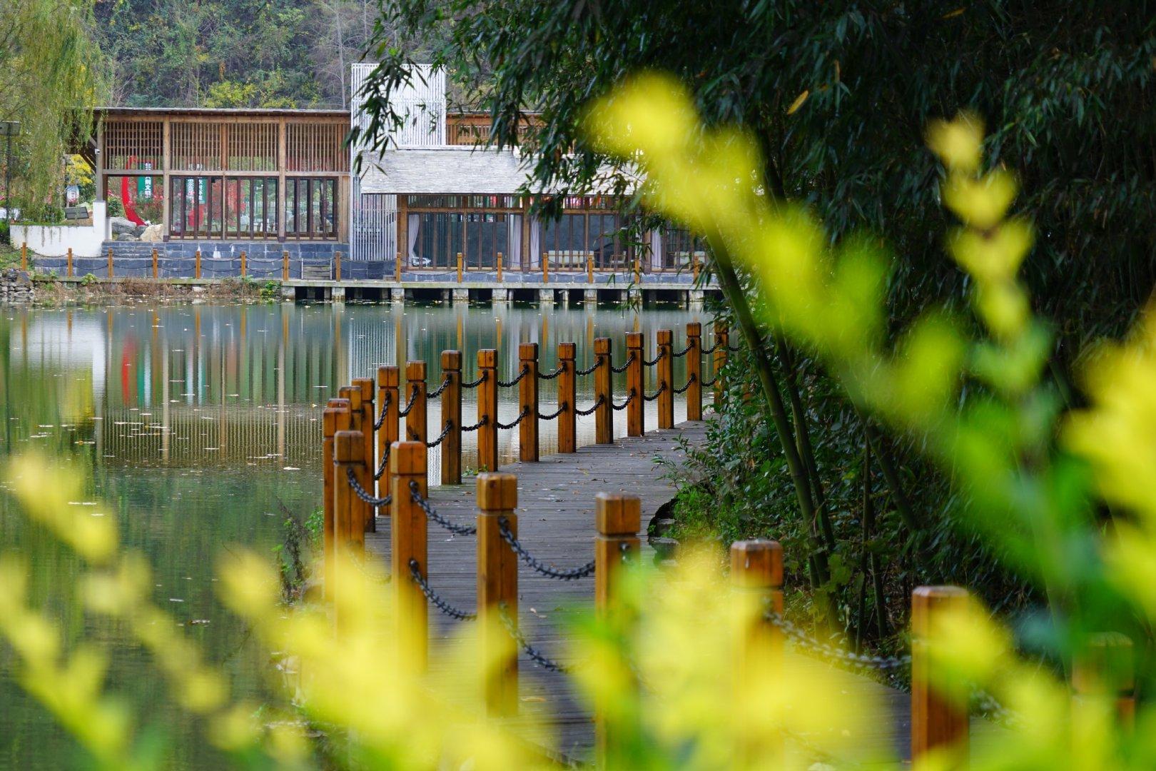 走进金丝峡镇王家坡,距离金丝峡景区7公里