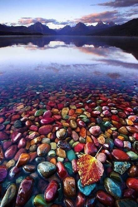 世界上最干净的湖泊之一——Flathead lake 弗拉特黑德湖