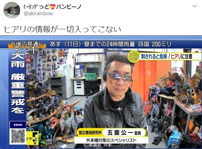 趣闻:NHK远程连线日本国立环境研究所外来生物对策专家