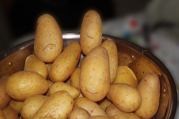 想要节食减肥的女生,不妨试试土豆蒸紫薯,瘦身排毒效果好