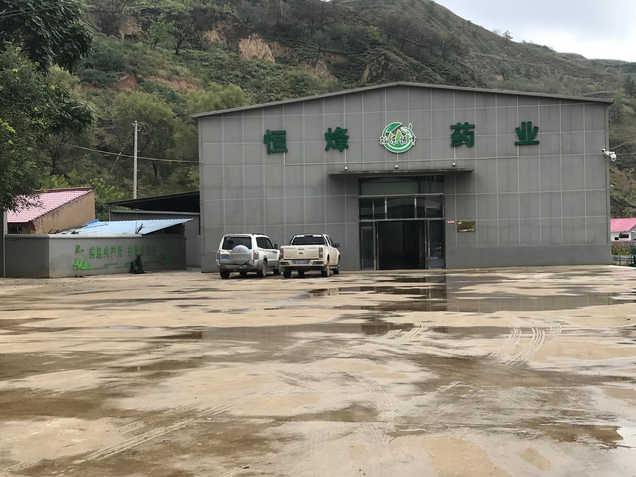 参观华池县恒烽中药材公司目前主打金银花系列产品