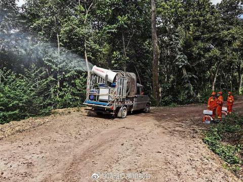 记者今日(7月30日)从云南省林业和草原局获悉:6月底以来……