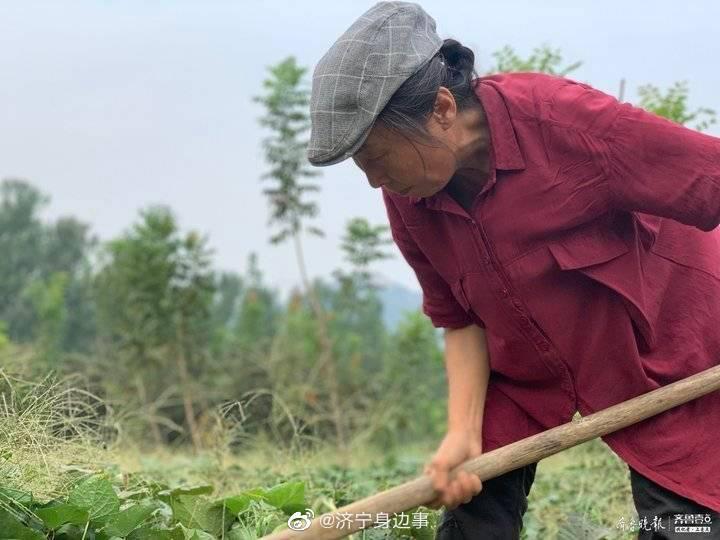 只为完成女儿遗愿,曲阜这位母亲扎根山野九年打造万亩公益林