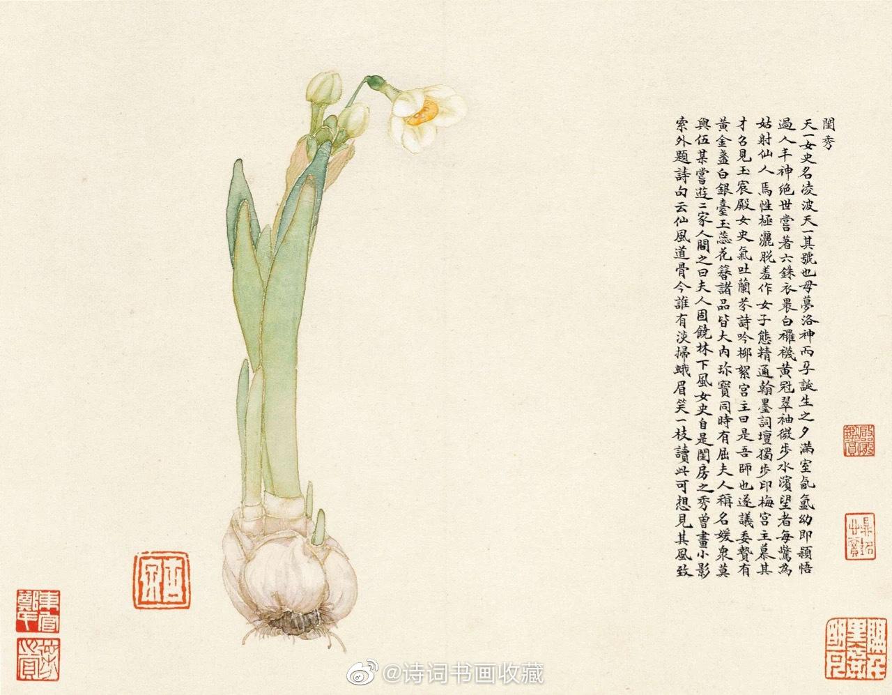 居廉《群芳竞妍册》居廉(1828年9月22日-1904年5月5日)广东省广州