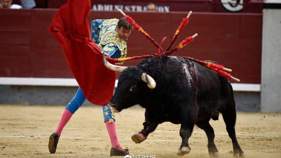 不能斗牛的西班牙 可以在钉钉上孔子网课