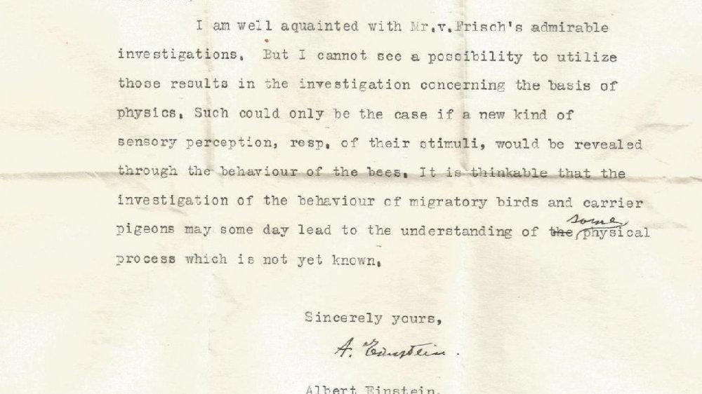 鸟、蜜蜂、物理学——爱因斯坦未公开的信说了什么?