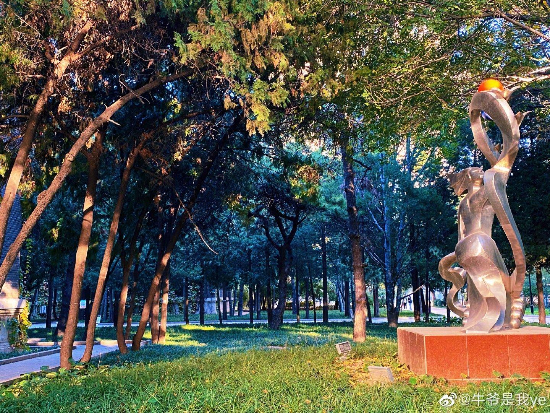 北京林业大学的秋天真的很美摄影@牛爷是我ye