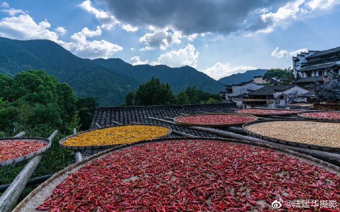 秋天的婺源篁岭古村有晒秋、有大自然赋予的色彩~   (@陆建华摄影
