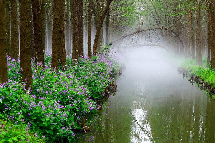 日长雅趣超尘俗,散步逍遥快心目。