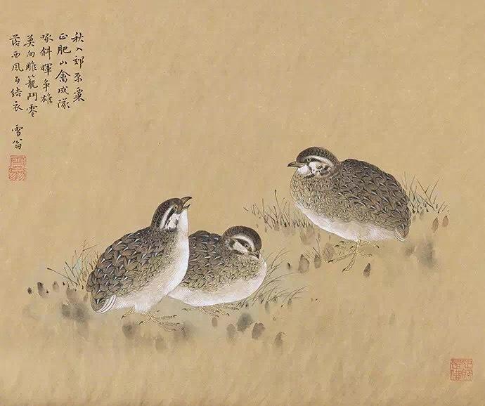 工笔画大师陈之佛的花鸟作品欣赏。