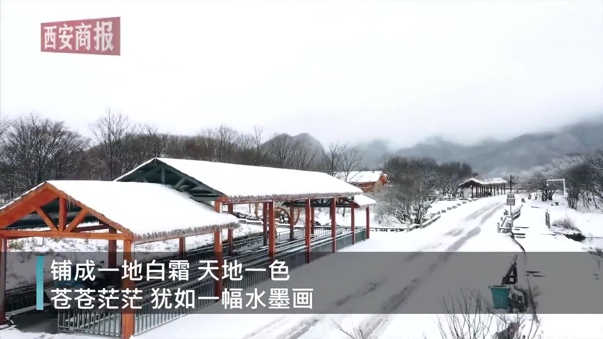 视频|美呆!航拍湖北神农架雪后大九湖,宛如一幅水墨画