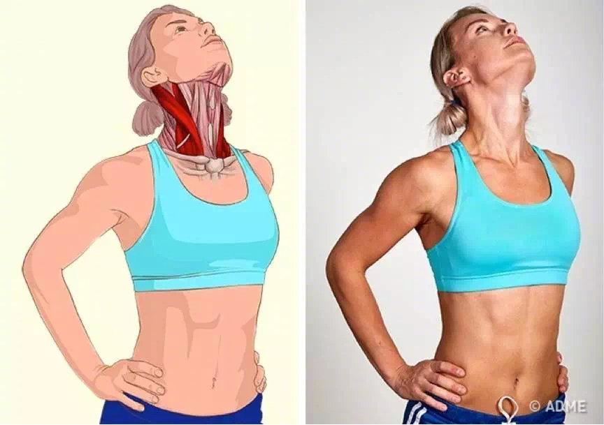 睡前做一遍这几个拉伸动作,缓解颈肩疼痛不适,提高睡眠质量