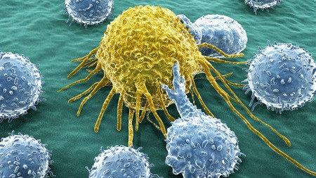 默沙东Keytruda获批单药治疗复发/难治性经典型霍奇金淋巴瘤