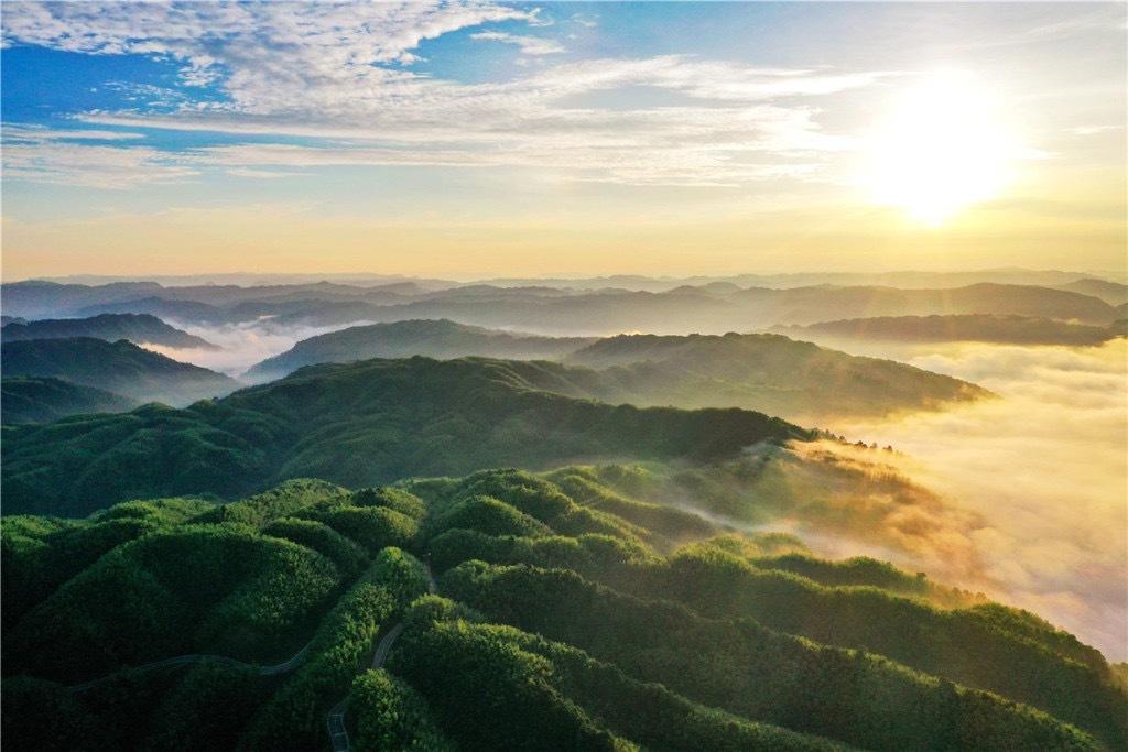 福宝国家森林公园位于四川南部边缘泸州市合江县境内