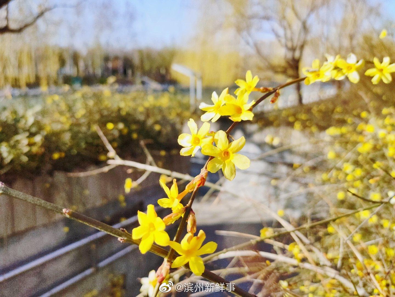 春日新立河公园