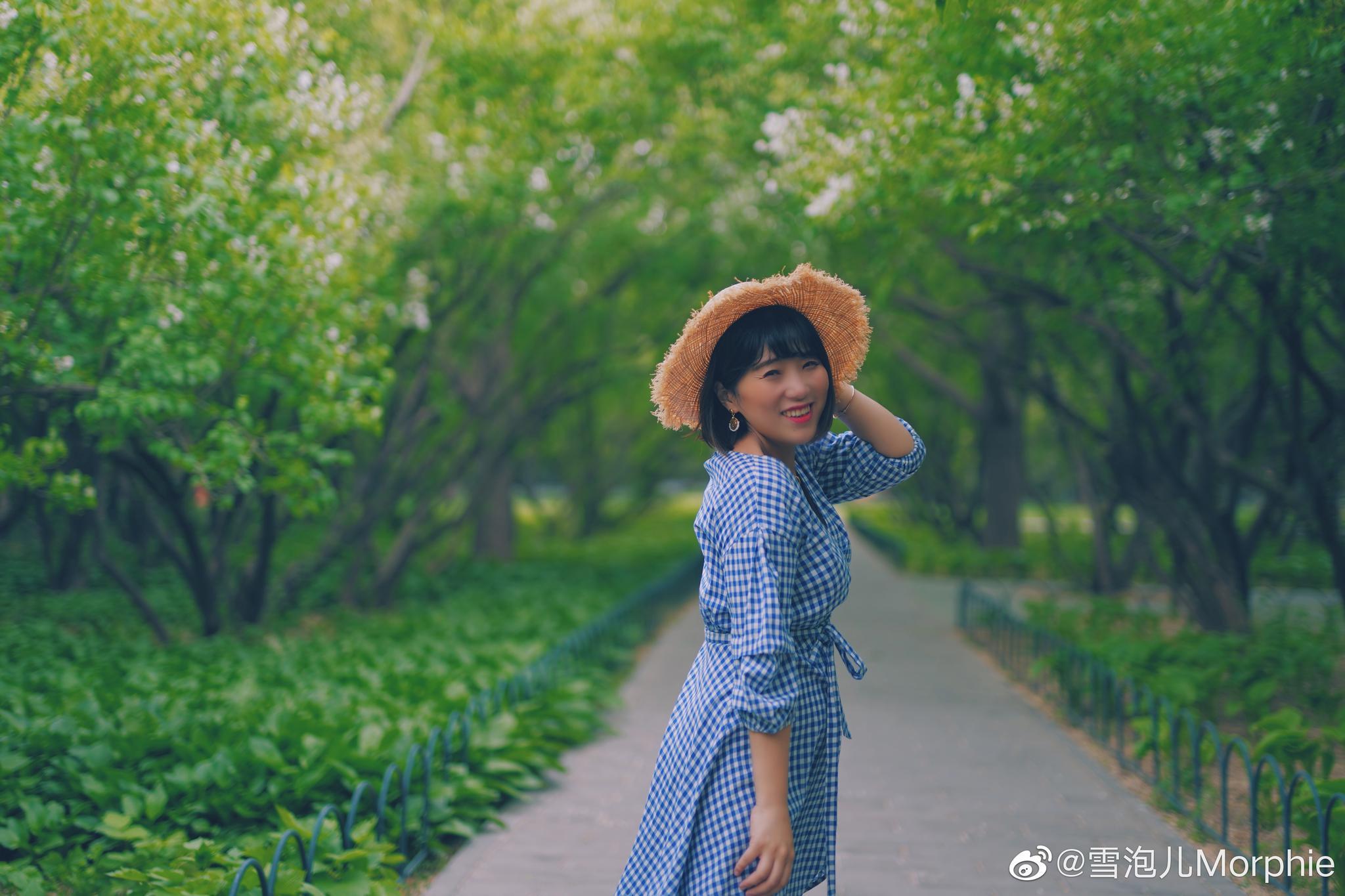 北京花季 留住春天的花朵,私藏的丁香秘密花园