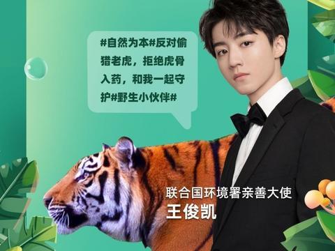 王俊凯以联合国环境署亲善大使的身份助力保护野生动物