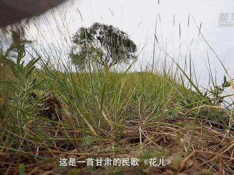 系列微纪录片·中国脱贫故事|一把晴雨伞 撑起新生活