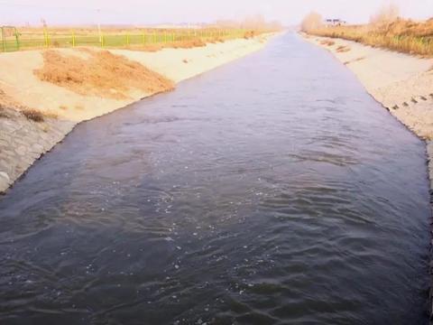 引水400余万方,武强县水利局多措并举保春灌