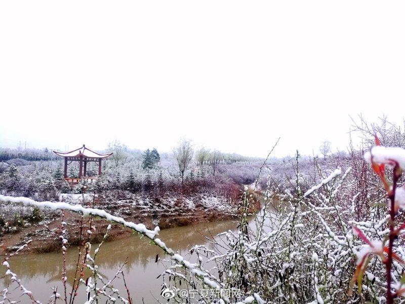 2020年的初夏受冷空气影响隆德县迎来了一场降雪