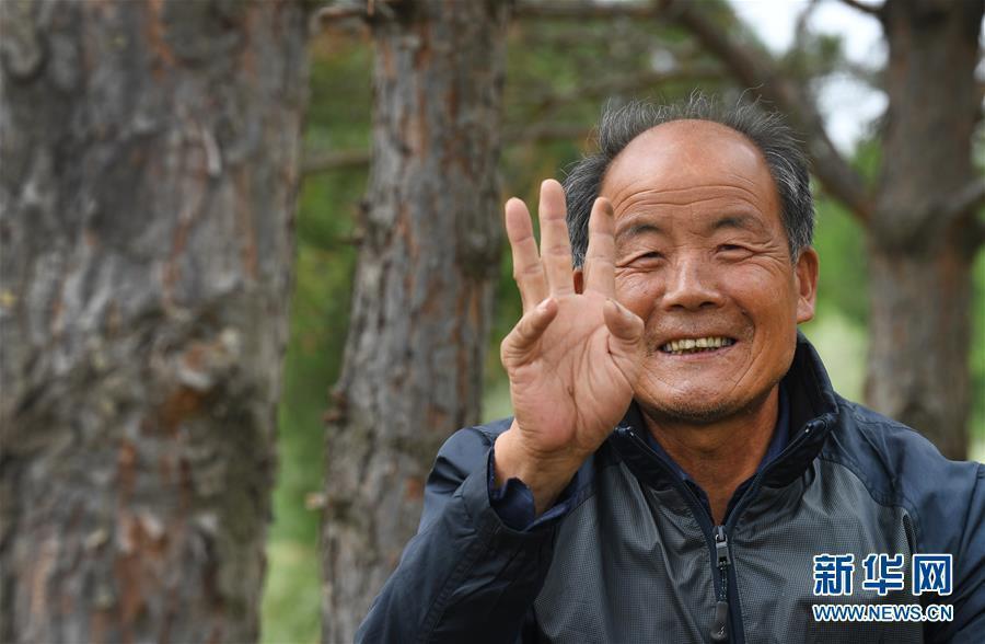 靖边齐军祥:二十年绿化一座荒山