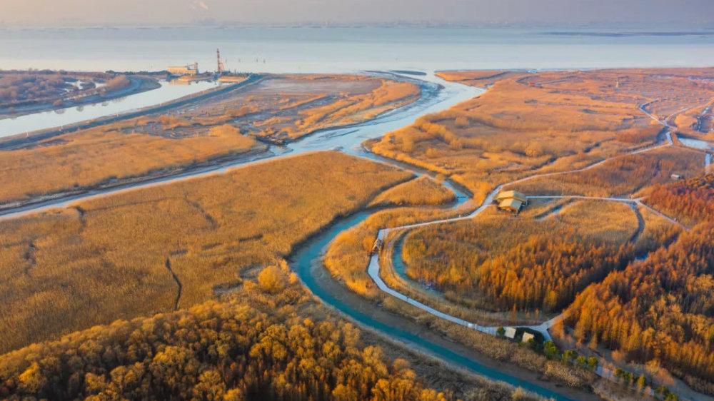 久未露面的西沙湿地近况如何?来看最新冬日美图