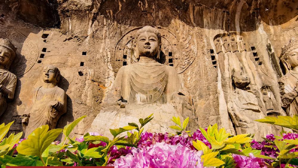 《国际文化视野下的洛阳》活动举行,探讨国外学者眼中的龙门石窟